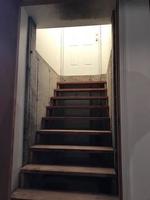 Mold Remediation in Burlington, CT (1)