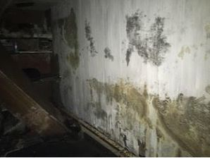 Water Damage Restoration in Portchester, NY (1)