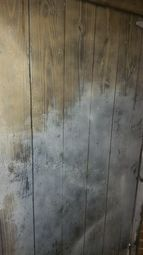 Mold Removal & Crawl Space Cleaning from Water Damage in Stamford CT (1)