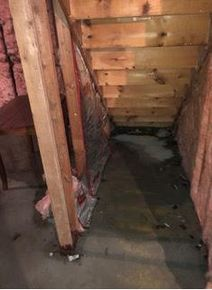 Flood Damage/Mold/Pipe Break/Moldy Insulation Exposed in New London, CT (2)