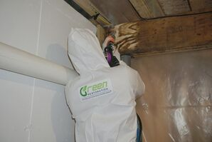 Mold Remediation Greenwich, CT (1)