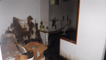 Water Damage Clean Up Sewage Backup, Mold Remediation Westchester County, NY