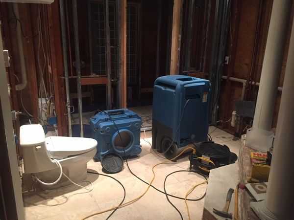 Mold Removal after Burst Pipes caused Water Damage in Weston CT (3)
