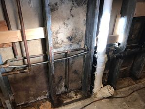 Mold Removal from Water Damage in West Hartford CT (2)