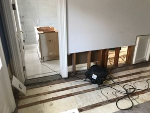 Mold Removal from Water Damage in West Hartford CT (4)