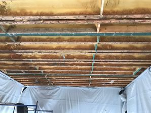 Mold Removal from Water Damage in West Hartford CT (7)