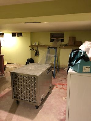 Mold Removal Bridgeport CT (2)