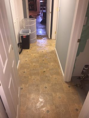 Water Damage Restoration & Mold Removal Morris CT (4)