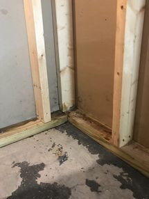 Mold Removal & Water Damage Restoration Monroe CT (3)