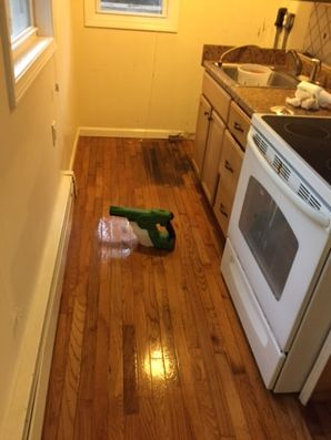 Odor Removal Guilford CT (2)