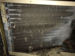 Air Duct Cleaning & Mold Removal in Weston CT (4)