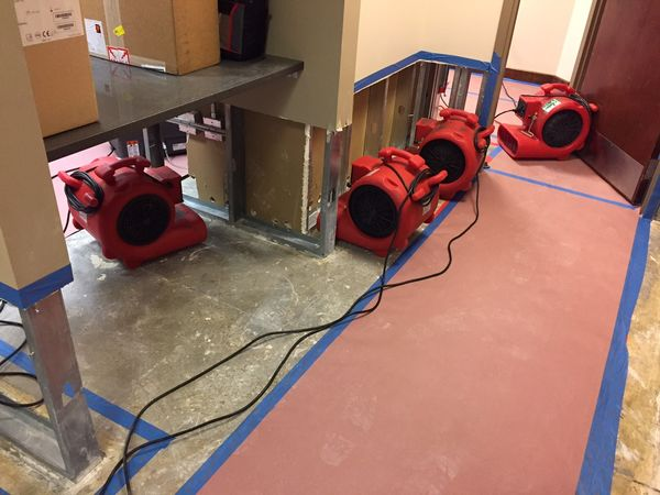 Water Damage & Mold Removal in Norwalk, CT (5)