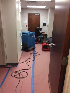 Water Damage & Mold Removal in Norwalk, CT (3)