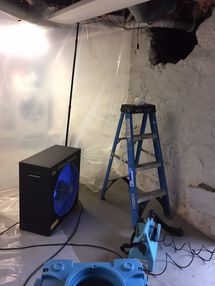 Mold Removal & Crawl Space Cleaning in Stratford CT (1)