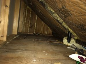 Mold Removal & Attic Insulation in Meriden CT (1)