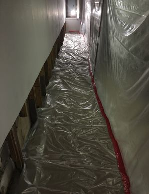 Mold Removal in Norwalk, CT (2)