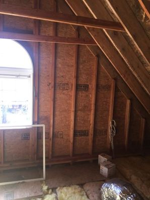 Mold Removal in New Haven, CT (2)