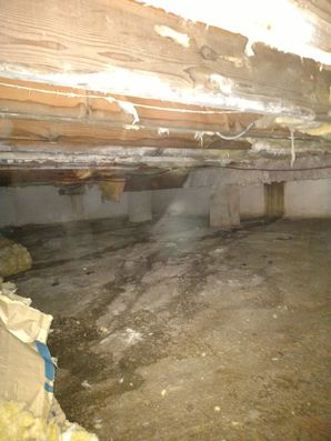 Crawl Space Cleaning Mold Removal Stamford CT (2)