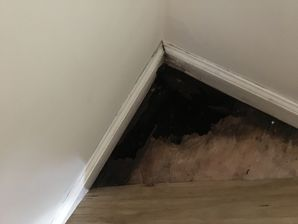 Odor Removal in Westport, CT (2)