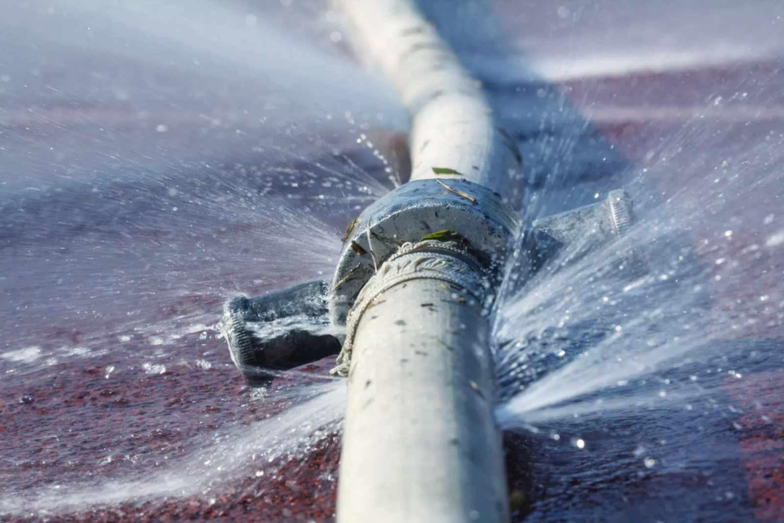 Image greenrestoration-waterdamage