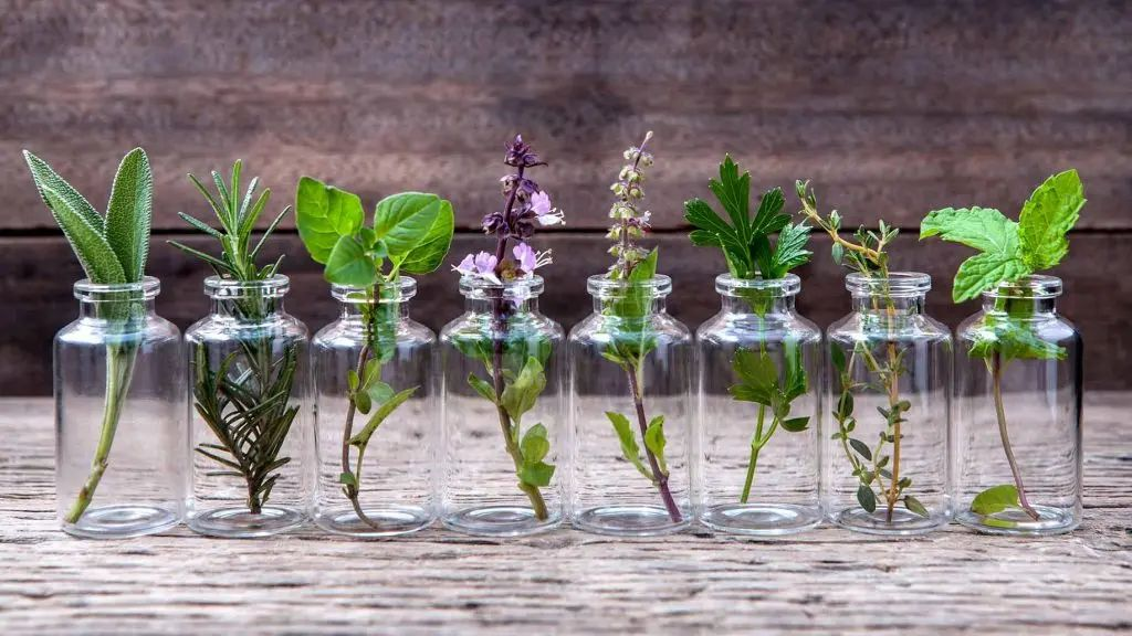 Image essential-oil-natural-health-benefits-prasadhak
